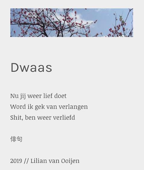 Dwaas - Lil Poëzie, Lilian van Ooijen