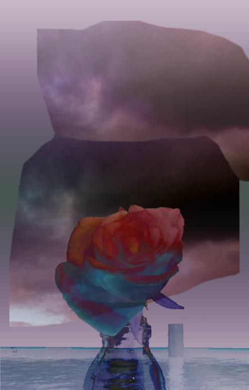 luchtbloem - Lilian van Ooijen